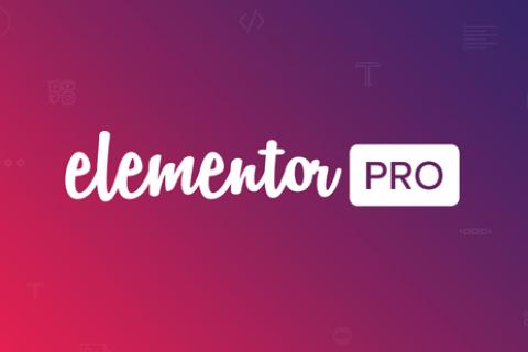 Elementor Pro v2.5.4  - 一个WordPress插件+弹出模板