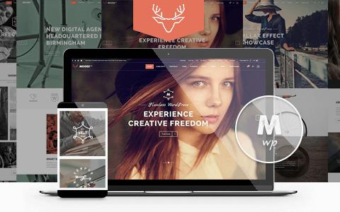 Moose v3.0  - 创意多用途WordPress主题