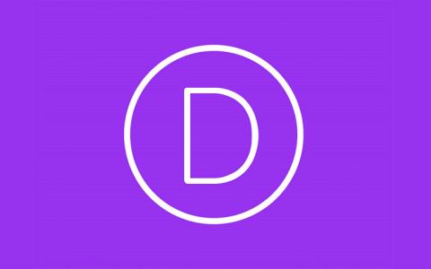 Divi v3.22.2  - 终极WordPress主题和可视页面构建器