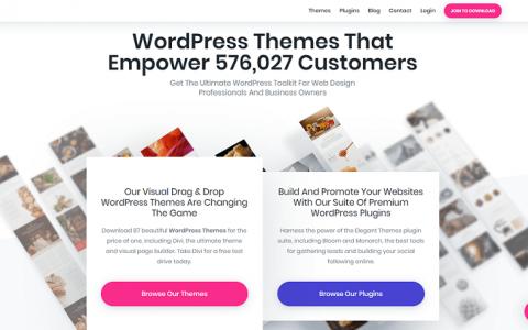 下载 -  89+ ElegantThemes高级WordPress主题包