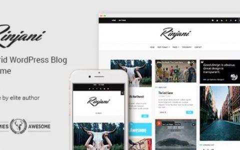 Rinjani v1.6  - 响应式网格WordPress博客主题