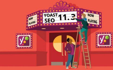 Yoast SEO v11.3  - 排名第一的WordPress SEO插件+附加组件