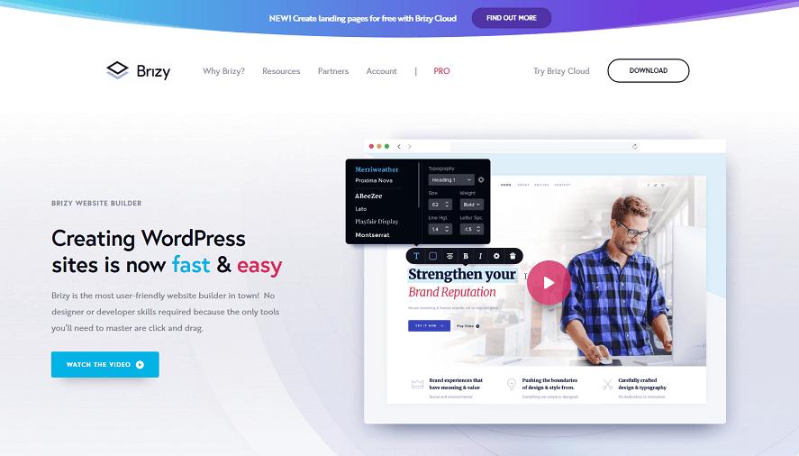 Brizy Pro WordPress插件