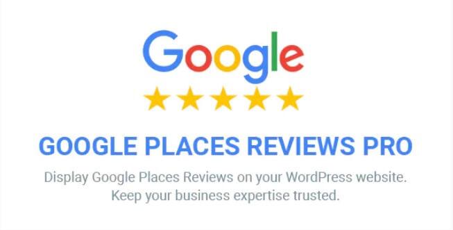 Google地方评论专业版