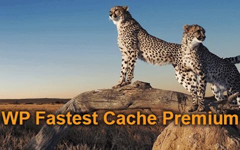 WP Fastest Cache v1.5.4  - 一個高級WordPress插件