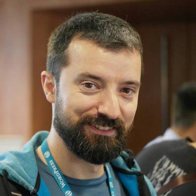 Nemanja Aleksic采访 -  ThemeIsle