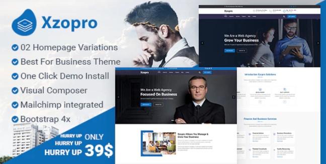 Xzopro  - 财务和业务咨询WordPress主题