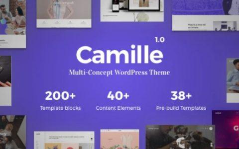 Camille v1.0.8  - 响应式多概念WordPress主题