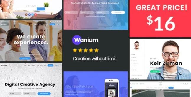 Wanium  - 优雅的多元概念主题