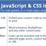 页面中的自定义JavaScript和CSS