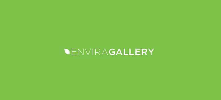 envira画廊评论
