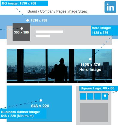 LinkedIn图像大小2020:LinkedIn个人资料图片大小,LinkedIn封面照片大小,LinkedIn横幅大小