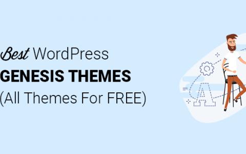 WordPress的17个最佳创世纪儿童主题(2020)