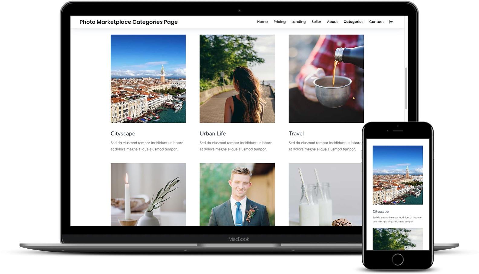 Divi WordPress摄影选项