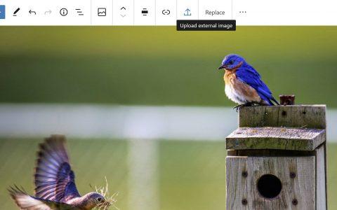 Gutenberg 8.5添加单个图库图像编辑,允许从外部来源上传图像,并改进拖放