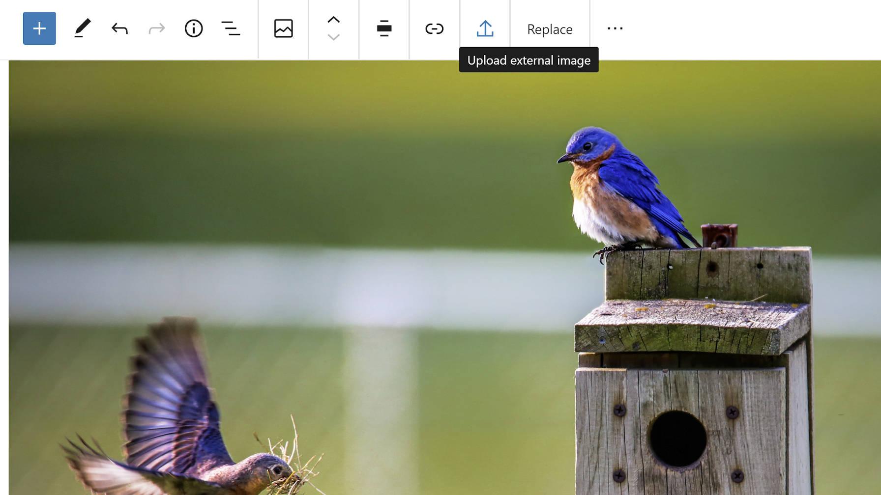 gutenberg-8-5添加了一个单库图像编辑允许图像从外部源上载,并改进了拖放功能Gutenberg 8.5添加了单个库图像编辑,允许从外部上载图像来源,并改善拖放