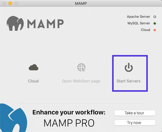 MAMP启动服务器选项