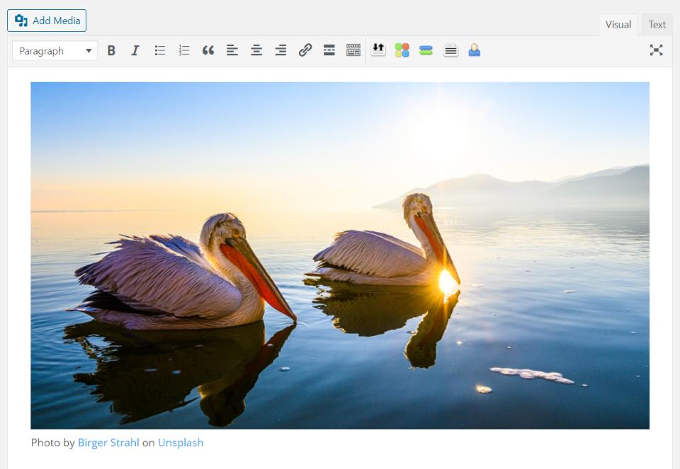 unsplash-wordpress-plugin-overview-and-view-13 Unsplash WordPress插件概述和审查