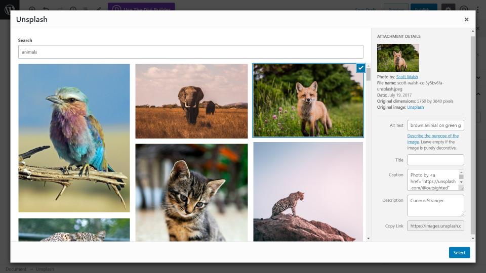 unsplash-wordpress-plugin-overview-and-view-16 Unsplash WordPress插件概述和审查