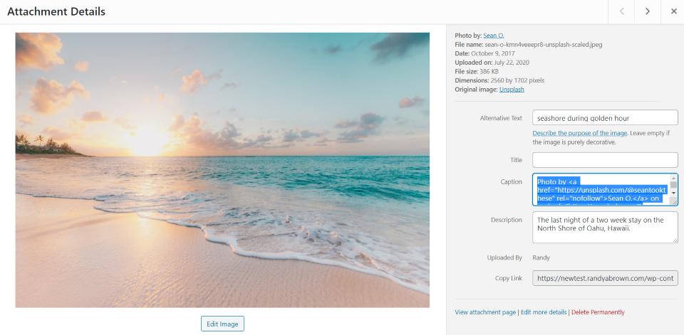 unsplash-wordpress-plugin-overview-and-view-23 Unsplash WordPress插件概述和审查