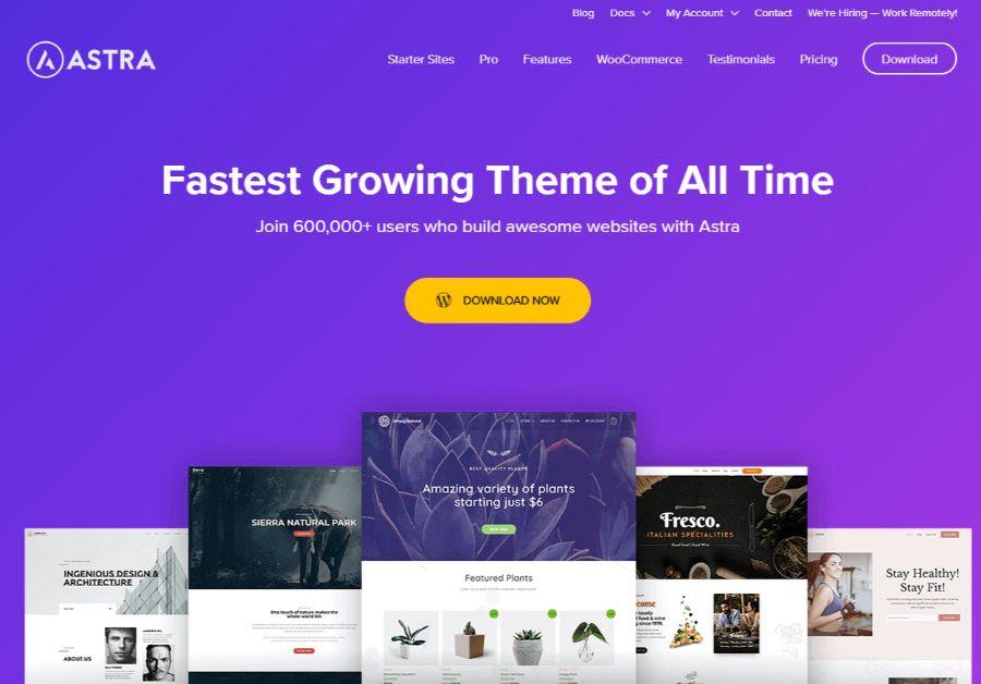 astra-WordPress会员主题