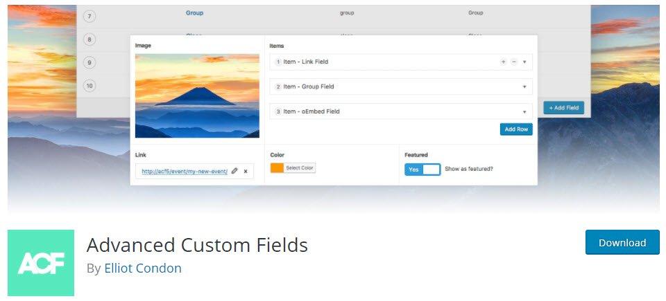 003-Custom-Fields
