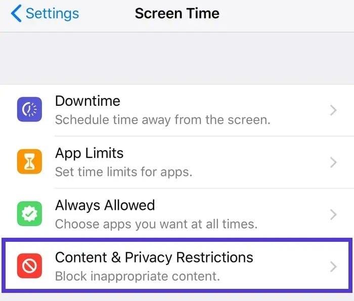 iPhone设置内容和隐私