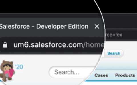 如何将Salesforce连接到您的WordPress表单