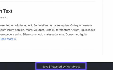 WordPress SEO:55个技巧,可在12个月内使自然流量增长78%以上