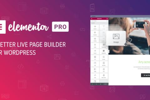 Elementor PRO v3.0.8未使用– WordPress页面生成器