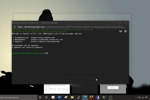 在Google Cloud Platform 2上安装EVE-NG