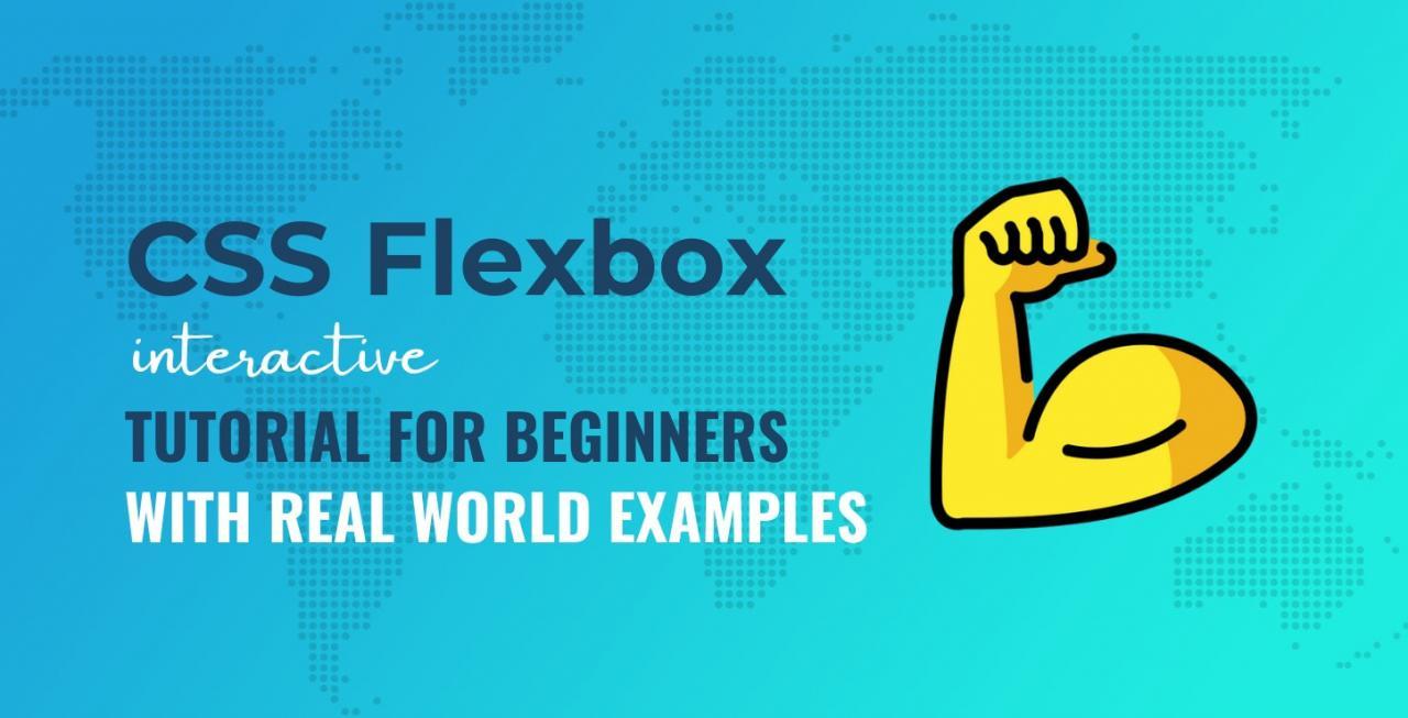 CSS Flexbox初学者教程:如何使用Flexbox