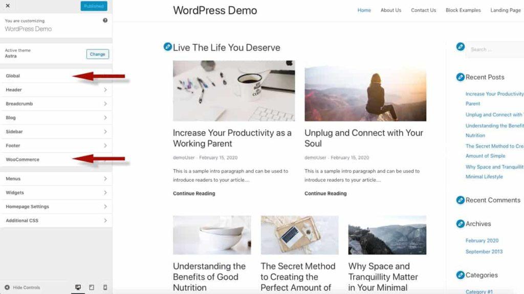 WordPress Customizer中的Astra主题选项