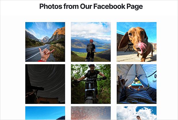 facebook-photos-on-website-example