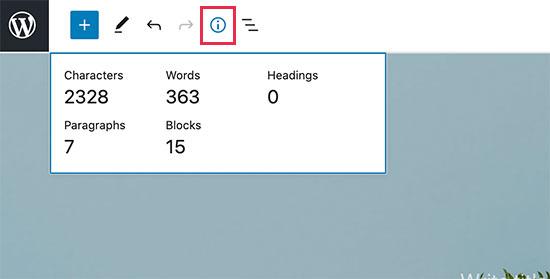 WordPress 5.6中的信息面板