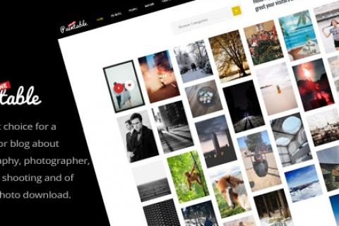 Paintable v2.4 –摄影和博客/照片下载WordPress主题