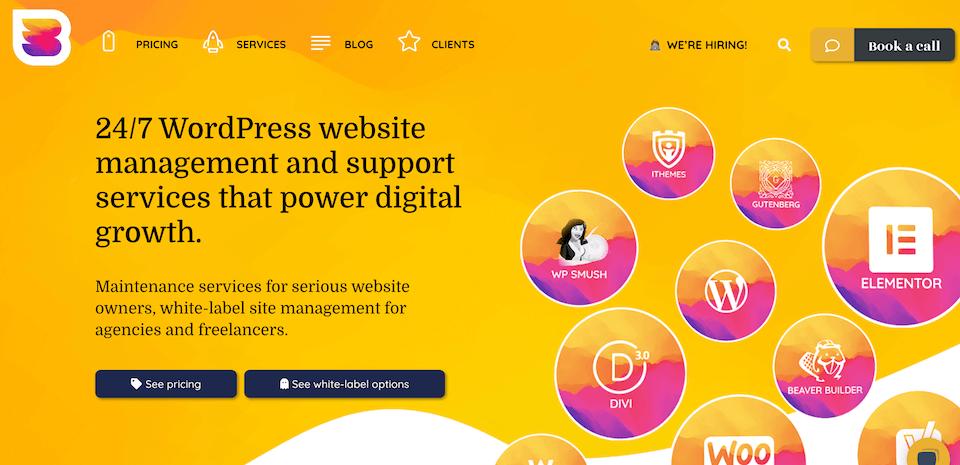重写5-最佳WordPress维护支持服务 [REWRITE] 5最佳WordPress维护和支持服务