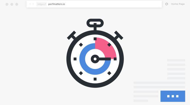 Perfmatters-开发插件可以加速您的WordPress网站