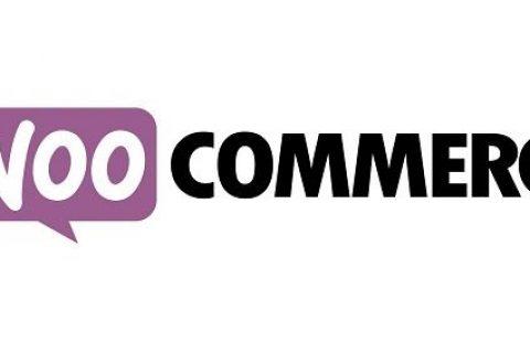WooCommerce智能优惠券v4.17.5