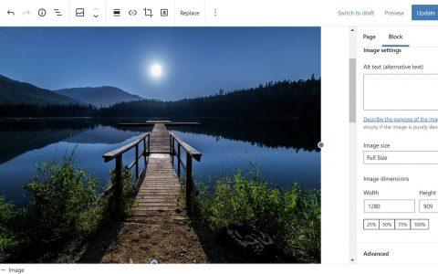 Gutenberg 10.3支持默认图像大小,继续规范化工具栏,并对主题块进行分类