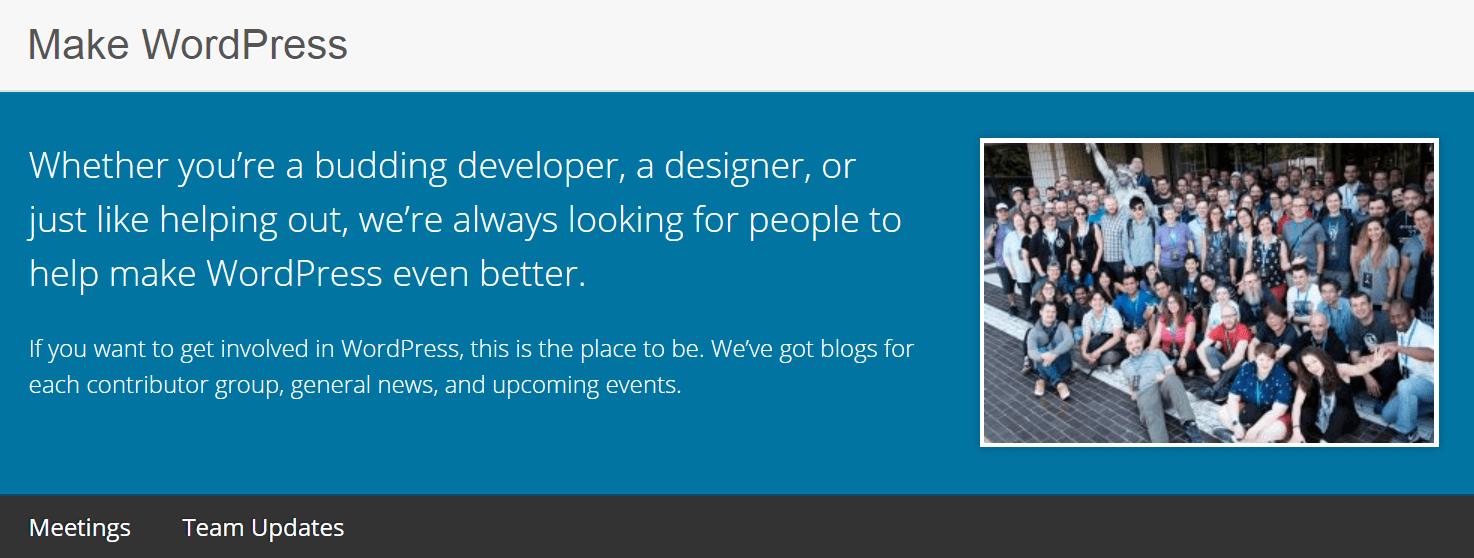 Make WordPress网站。