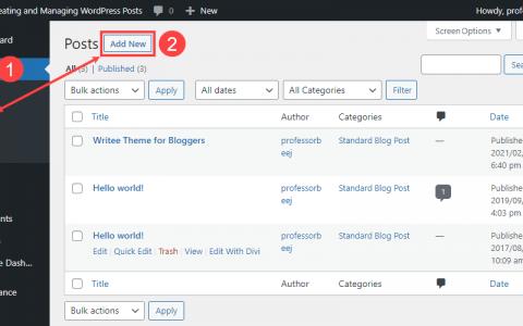WordPress帖子:如何创建和管理它们