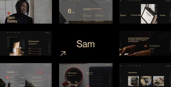 Sam Bailey-个人简历,恢复WordPress主题