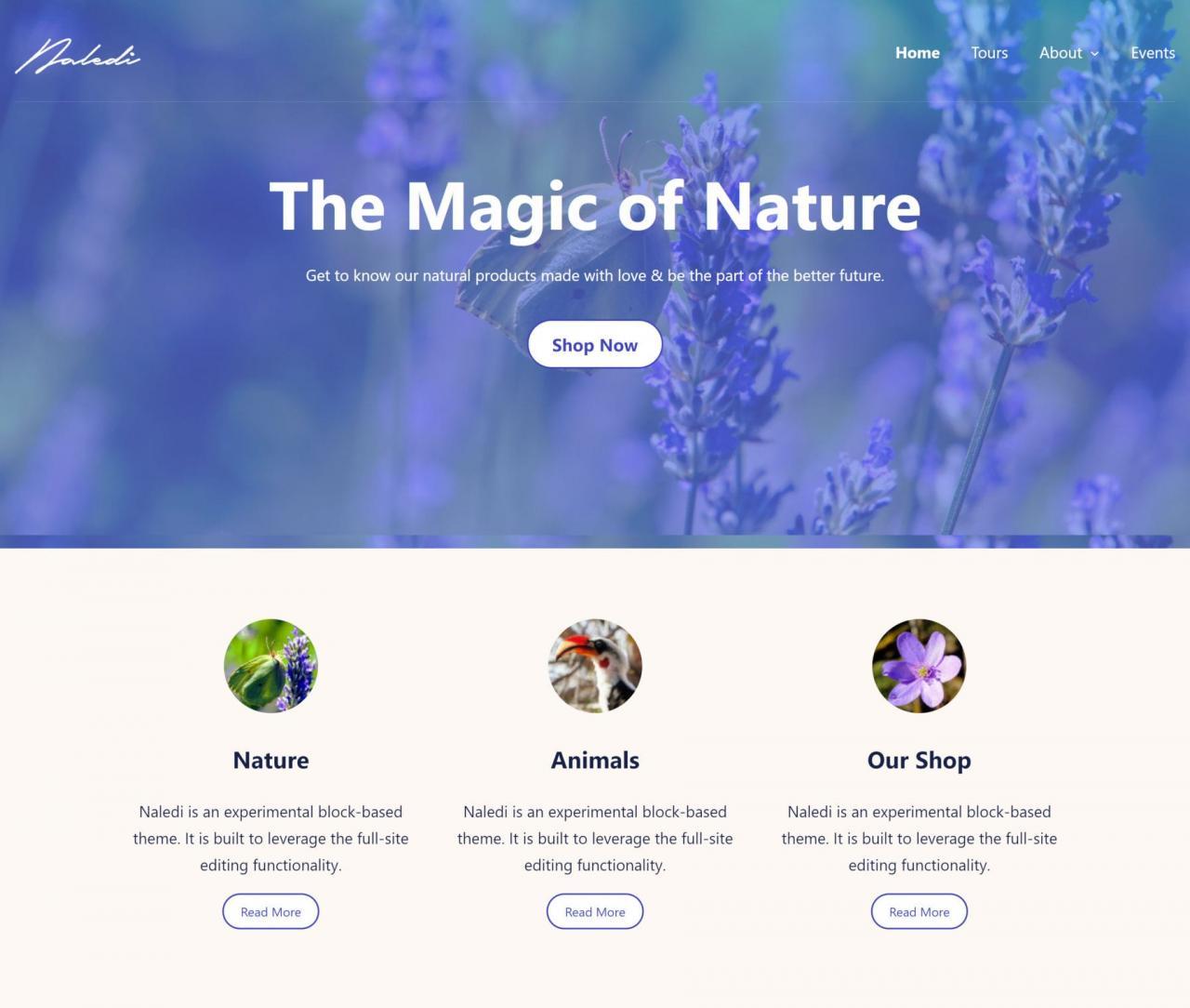 anariel设计推出naledi一个基于块的wordpress主题Anariel Design推出Naledi,这是一个基于块的WordPress主题