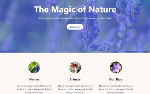 Anariel Design推出基于区块的WordPress主题Naledi