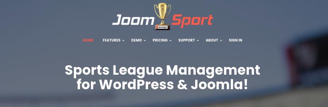 6-best-wordpress-sports-plugins-5 6 个最好的 WordPress 运动插件