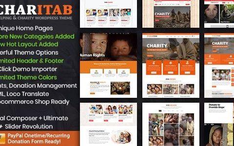 Charitab – 非营利慈善 WordPress 主题