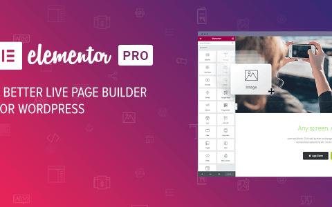 Elementor PRO v3.3.5- WordPress 页面生成器