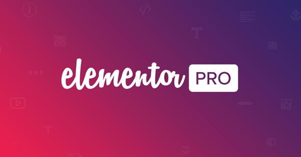 Elementor Pro  - 实时表单编辑器