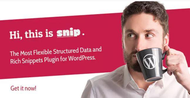 SNIP:WordPress的结构化数据插件